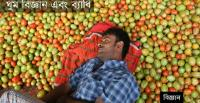 Sleep science and disorder [Photo: A tomato vendor asleep in Dhaka/chinadaily.com.cn]