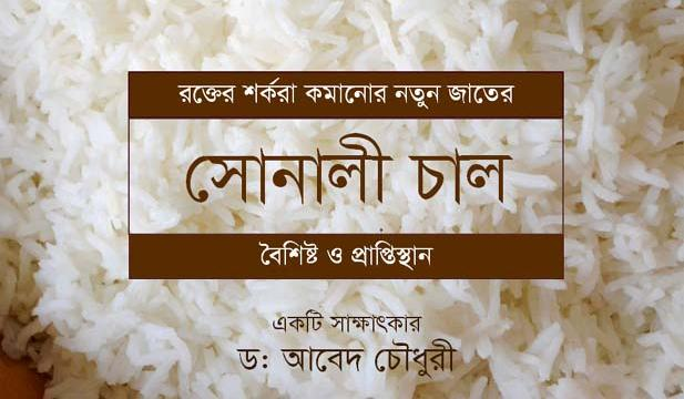 Interview - Dr. Abed Chaudhury: Characteristics of blood sugar level lowering rice 'Shonali Chaal' and how to procure it